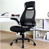BERLMAN Ergonomic High Back Mesh Office Chair with Adjustable Armrest Desk Chair Computer Chair (Black Plus)