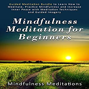 Mindfulness Meditation for Beginners Audiobook
