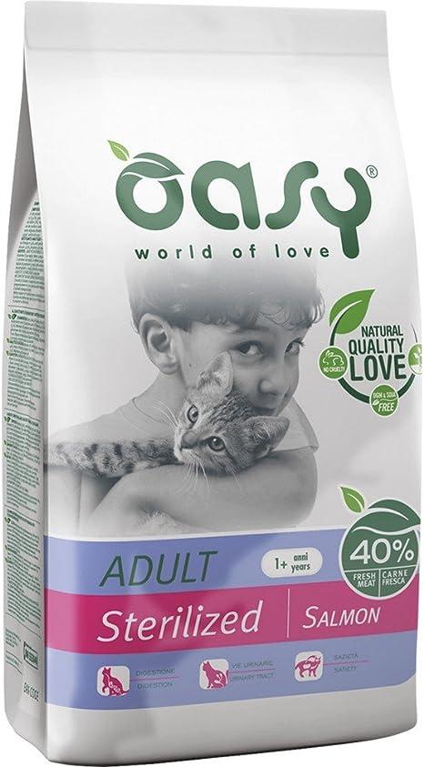 Oasy Comida seco para Gatos y Pienso Adulto Varios Sabores ...
