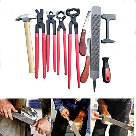 Professional Farrier/'s Choice Hoof Trimming Kit for Horses Quality /& Durability