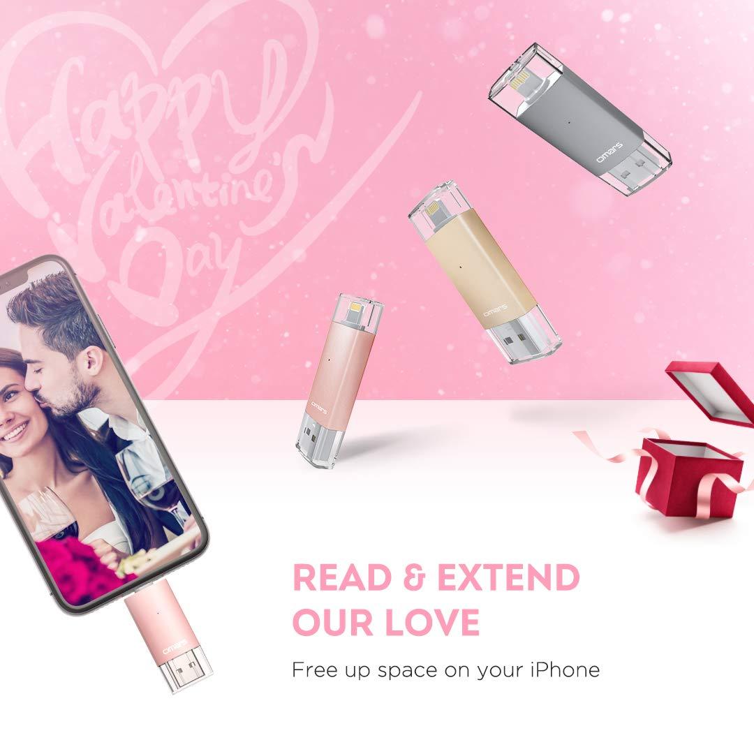 64GB, Oro rosa Omars per iPhone iPad Dispositivi iOS//Mac//PC MFi certifacato Flash Drive USB