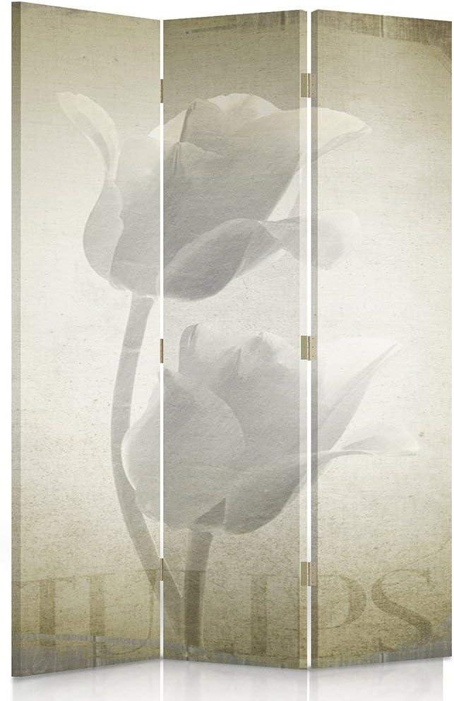 Feeby Frames Biombo Impreso sobre Lona, tabique Decorativo para Habitaciones, a una Cara, de 3 Piezas (110x180 cm), Flores, TULIPÁN, Naturaleza, Vintage, MARRÓN: Amazon.es: Hogar