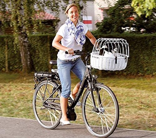 Fahrradkorb für Hunde weiß, L 52 cm x B 38 cm x H 18/40 cm, bis 12kg