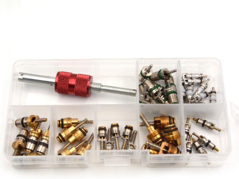 Nikauto 45pcs Aria condizionata valvola Core e 1pcs a//c r12 r134a Gambo di valvola Core del Dispositivo di rimozione