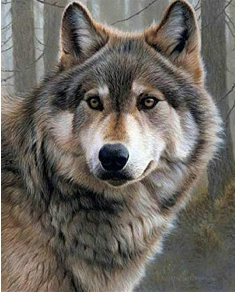 DIY 5D Diamond Painting Wolf Kits for Adults Full Drill, Painting Cross Stitch Crystal Rhinestone Embroidery Pictures Arts Craft for Home Wall Decor Gift,5D Painting Arts Kit (Wolf)