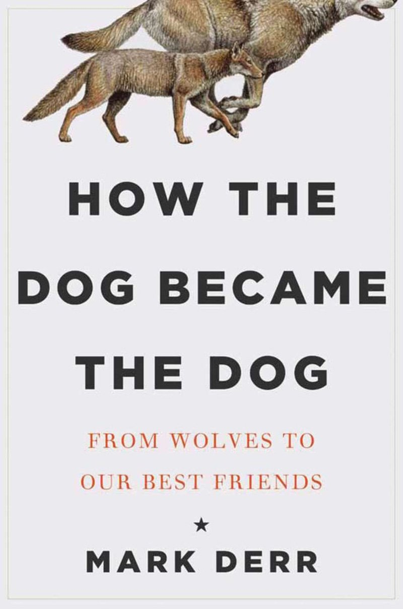How the Dog Became the Dog: From Wolves to Our Best Friends pdf epub