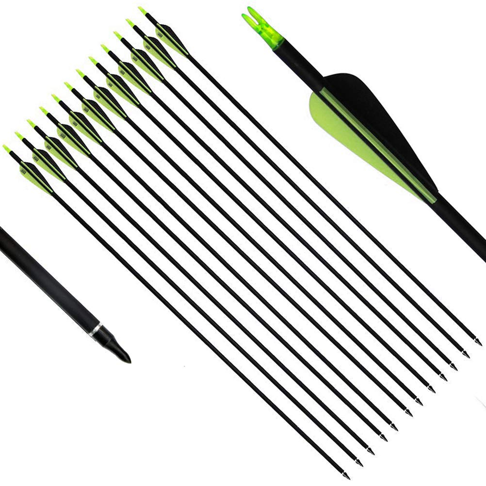 PG1ARCHERY Carbon Arrows, 30 Inch Targeting Arrows with Removable Tips 3'' Plastic Vanes Fletching for Archery Practice Hunting, 12 Pack Black Green