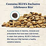 BLUE Wilderness Adult Grain-Free Chicken Dry Dog Food 24-lb from Blue Buffalo Company