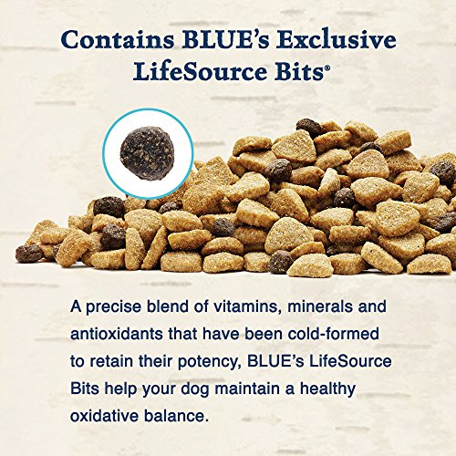 Blue-Buffalo-Wilderness-Grain-Free-Dry-Dog-Food-Duck-Recipe-24-Pound-Bag