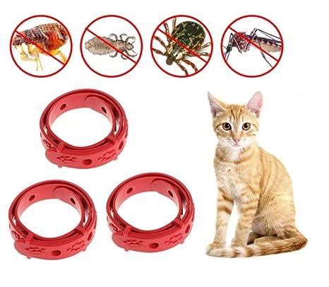 Ducomi Collar acrílicas Gatto – Juego de 3 – antiparasitario para Gatos – Longitud 33 cm