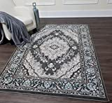 Home Dynamix Transitional Style, Intricate Details | Oxford Area Rug by 6531-451 | Gray Indoor Rug for the Living Room, Bedroom, Dining Room and Anywhere Else | Soft, Comfy, Durable, Easy to Clean Review