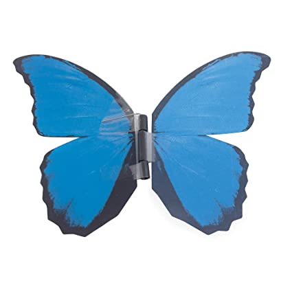 Amazon My Butterfly Collection