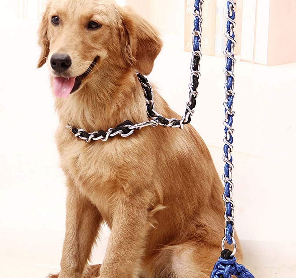 Dog Leash Rope Chain Large Dog Anti-bite Iron Chain Nickel-Plated Anti-Rust Collar,5,1.7m0.5cm