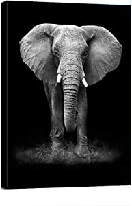 """Abstract Posters Wall Art Black White Animal Elephant Canvas Print Frame Picture Painting for Office Hallway Home Decor Kids Room Gift -12""""x16"""""""
