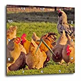 3dRose dpp_50417_1 Chickens Group Wall Clock, 10 by 10-Inch