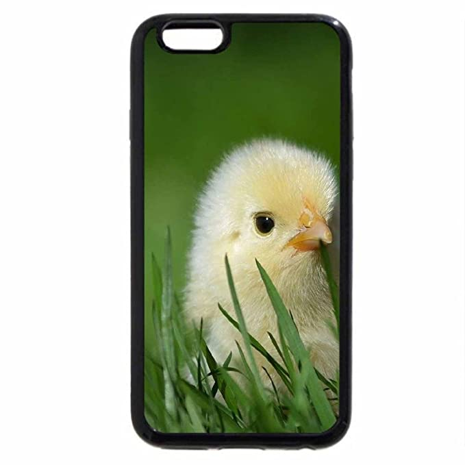 coque iphone 6 poulet