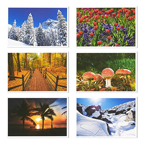Set of 40 Four Seasons Postcards Print Variety Pack Fall Autumn Winter Summer Spring Theme Self Mailer Mailing Side Postcards 20 Different Picture Designs 40 Pack Postage Saver - 4 x 6 Inches Photo #6