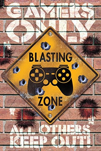 Aquarius NMR Blasting Zone Gamers Only Video Gaming Poster 24x36 inch