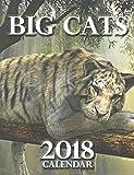 Big Cats 2018 Calendar