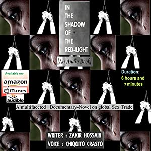 In the Shadow of the Red-Light Audiobook