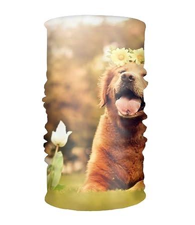 Amazon com : Unisex Golden Retriever Puppy Headwear Bandanas