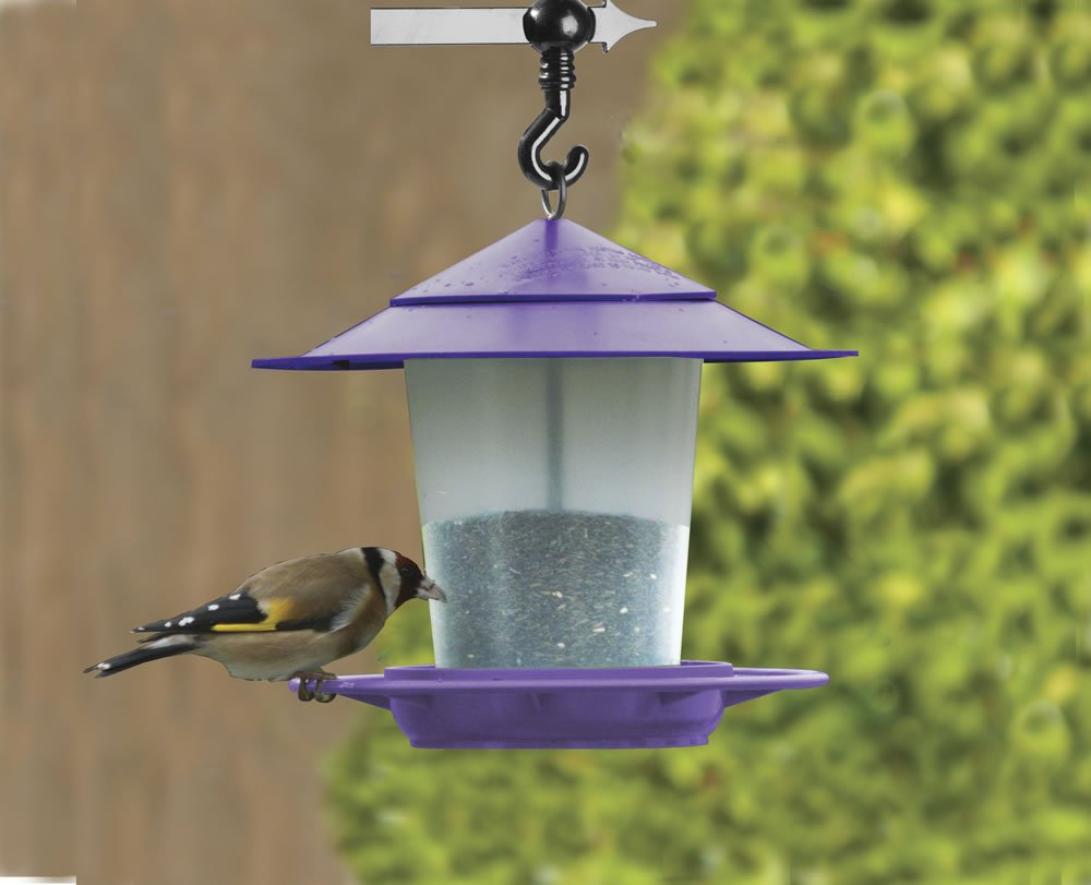 Lantern Bird Seed & Nut Feeder Purple Worth Gardening by Garland