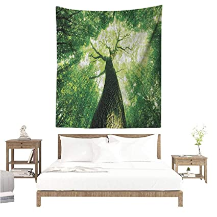 Amazon.com: Nature Living Room Tapestry Sun Rays to Woodland ...
