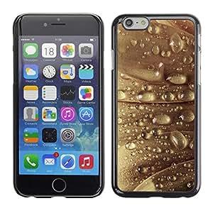 PC/Aluminum Funda Carcasa protectora para Apple Iphone 6 Plus 5.5 Plant Nature Forrest Flower 22 / JUSTGO PHONE PROTECTOR