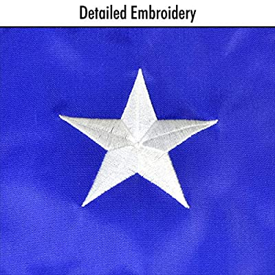 In the Breeze 5042 Texas State Flag Colorful Hanging Windsock Décor, 18-Inches : Garden & Outdoor