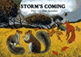img - for Storm's Coming book / textbook / text book