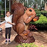 Design Toscano NE150347 Wirral The Enormous Squirrel Statue, Full Color