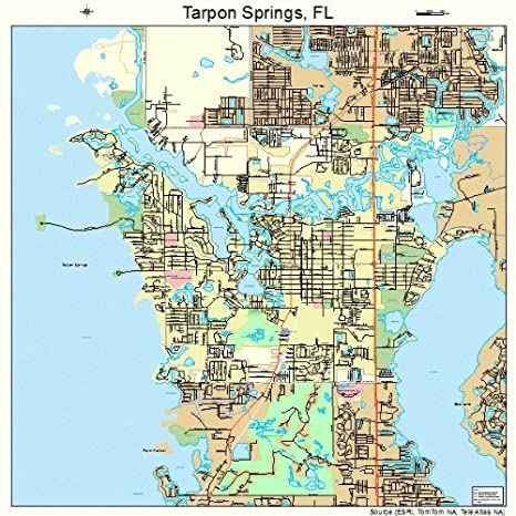Florida Road Map Atlas.Amazon Com Large Street Road Map Of Tarpon Springs Florida Fl