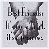 Best 3dRose Friend Sisters - 3dRose Set of 12 Greeting Cards, Best Friends Review