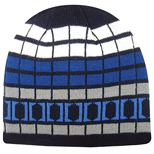 Ash Cap Jacob Reversible (Igloos Boys Reversible Logo Beanie, Limoges, One Size)