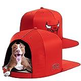 NAP CAP NBA Chicago Bulls Team Indoor Pet