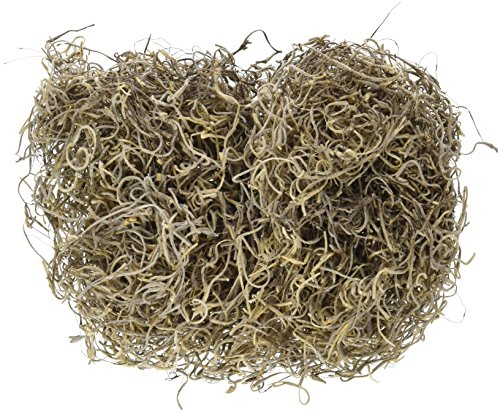 (FloraCraft Spanish Moss: 1 Oz.)