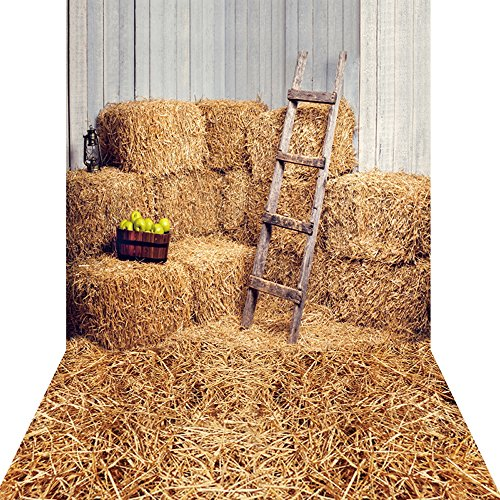 KonPon 5x10ft Silk Cloth Farm Haystack Backdrop Photography Props KP-006 ()