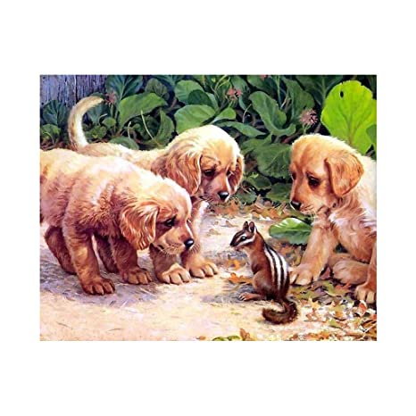 Provide The Best Patrón 5D / Perro/Tiger / aepyornithidae DIY Diamante Redondo Pintura Resina