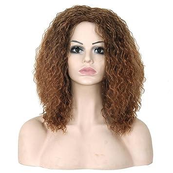 Meylee Pelucas Cosplay Afro peluca sintética marrón degradado con casquillo de la peluca libre