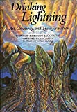 Drinking Lightning, Philip Rubinov-Jacobson, 9057034921