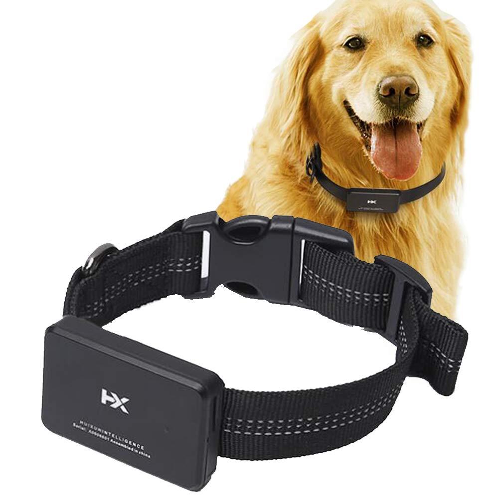 LotusPets Pet Locator, Dog GPS Satellite Micro Tracking Tracker Hound Anti-Lost Waterproof Collar, Suitable for Large, Medium-Sized Dogs,Mediumdog,E