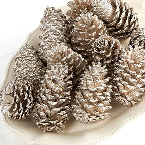 Factory Direct Craft Decorative Platinum Glittered Coated Natural Pinecones - 12 Pinecones