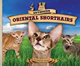 Outgoing Oriental Shorthairs, Katherine Hengel, 1617148318