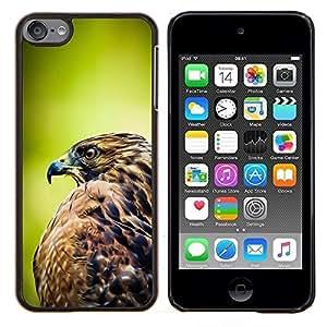 Stuss Case / Funda Carcasa protectora - Vert Image floue d'été - Apple iPod Touch 6 6th Touch6