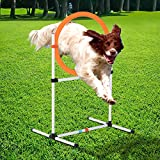 PawHut 2-in-1 Dog Obstacle Training Agility