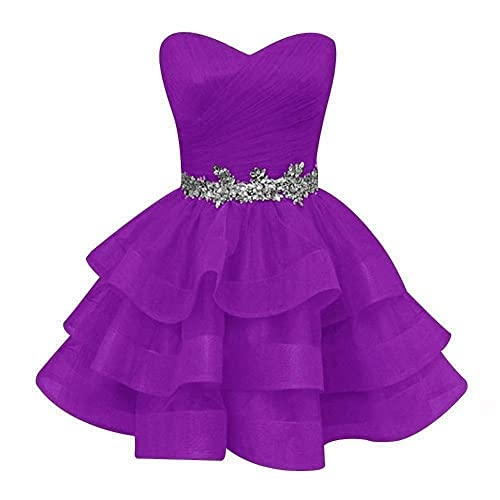 Corset Short Prom Dress: Amazon.com