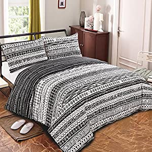 NTBAY 3 Pieces Duvet Cover Set Brushed Microfiber Black and White Geometric Printed Reversible Design with Hidden Zipper, Queen Size