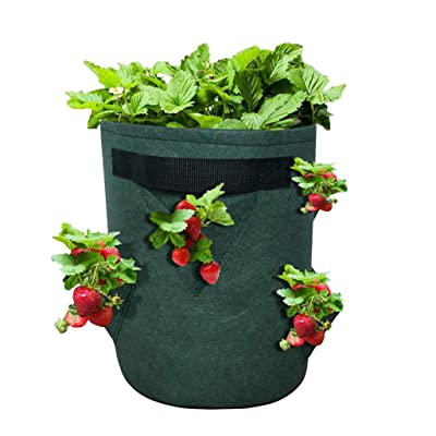 100 PCS Biodegradable Non-Woven Nursery Bags Plant Grow Bags Fabric Seedling Pots Plants Pouch Home Garden Supply Green: Clothing