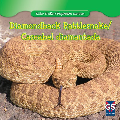 Diamondback Rattlesnake / Cascabel Diamantada (Killer Snakes / Serpientes Asesinas) (English and Spanish Edition) by Gareth Stevens Leveled Readers