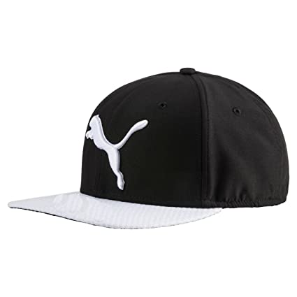 e23842f8db580 Amazon.com : PUMA Golf 2017 Men's Micro Disc Cap (Black White, One ...